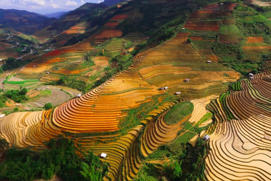 Chế Cu Nha, Vietnam